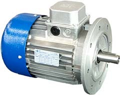 Electric Motor IEC Type MT B5 Flange style TN